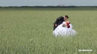 Видеооператор на свадьбу в днепропетровске, киеве, донецке(, 2014-03-12T18:41:32.000Z)