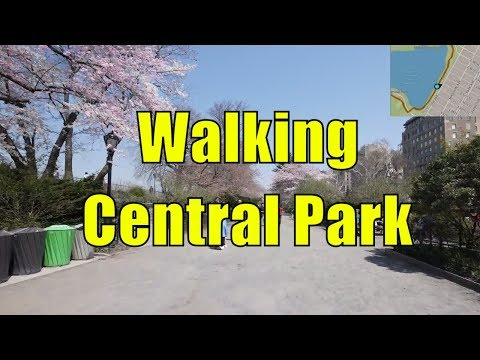 ⁴ᴷ Walking Tour of Central Park, NYC during Spring from 59th - 110th Streets (GPS Overlay)