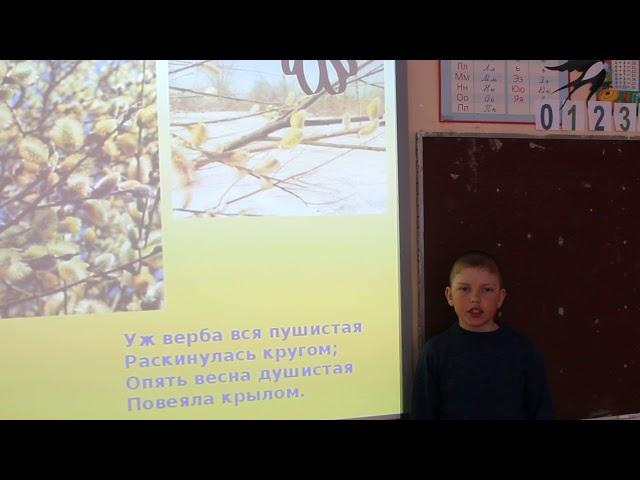 Изображение предпросмотра прочтения – ВладимирКрайников читает произведение «Уж верба вся пушистая...» А.А.Фета