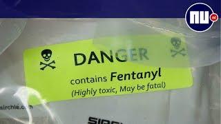 Wat is fentanyl, de dodelijkste drug in de VS?