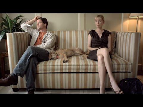 Shared Custody  Puppy Love  LStudio created by Lexus
