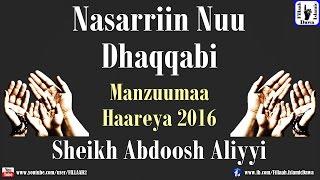 Yaa Rabbi Nasrriin Nuu Dhaqqabi | Sheikh Abdoosh Aliyyi | Manzuumaa Haareya 2016