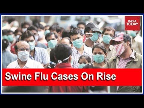 South Super Fast | Swine Flu Cases On Rise In Andhra Pradesh