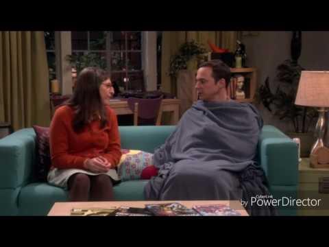 The Big Bang Theory  Soft Kitty