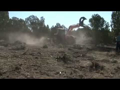 Land Clearing - BH85 Bull Hog - PTO Mulcher