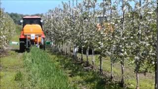видео Садоводство | Оформление Сада,Дизайн и Вопросы Ландшафта