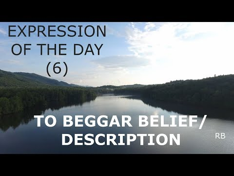 EXPRESSION OF THE DAY (6): TO BEGGAR BELIEF/DESCRIPTION
