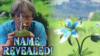 Breath of the Wild - FLOWER NAME REVEALED!