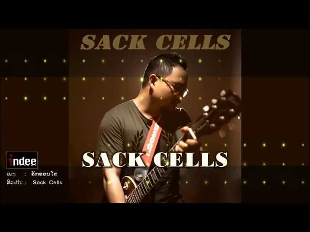 Sack CELLS - huk horb to - official audio with lyrics