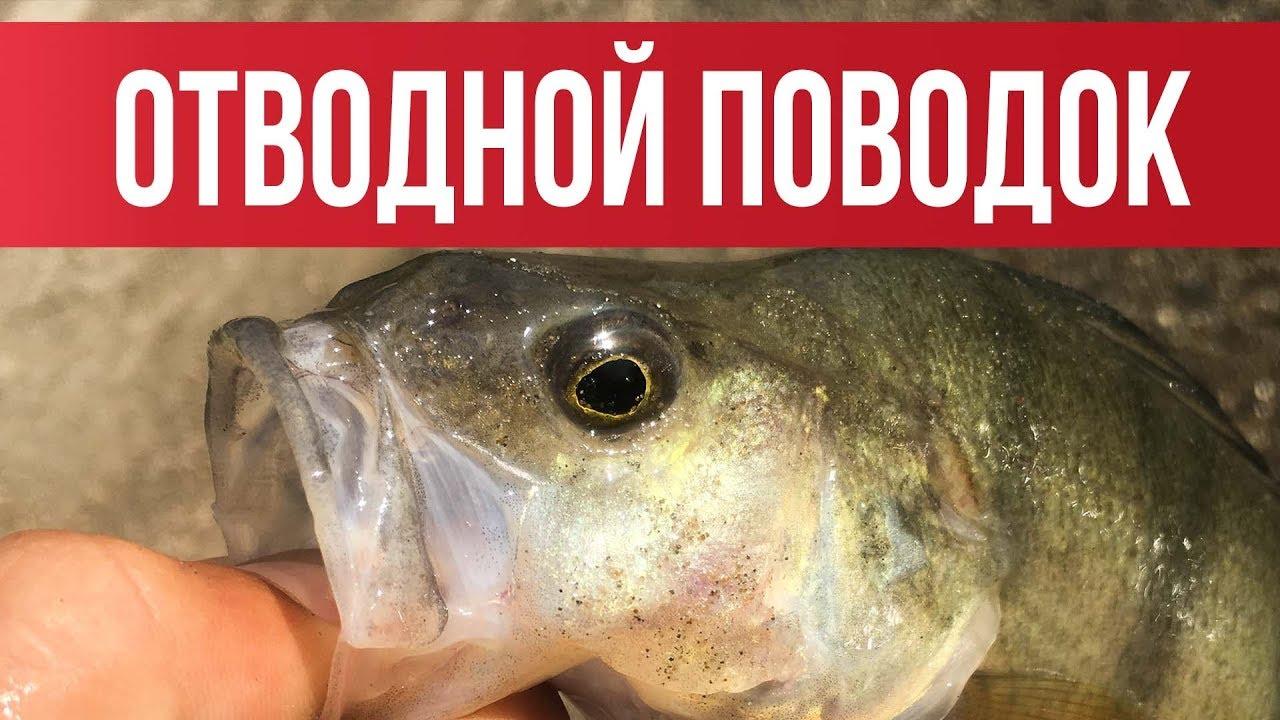 ОТВОДНОЙ ПОВОДОК! Самый ЛУЧШИЙ и ПРОСТОЙ монтаж 2019 | Рыбалка с Fishingsib