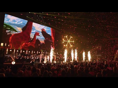 12 FMF  Koncert Disneya: Magia muzyki  Reportaż