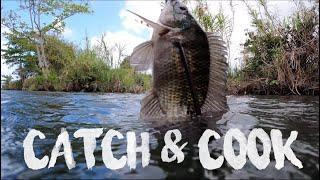 BIG Tilapia Fish Catch and Cook | Jamaica Outdoor Cooking