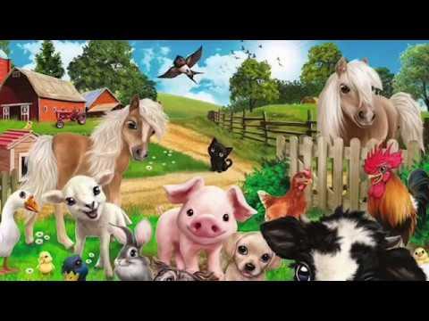 Домашние Животные И Птицы. Интересное Для Детей. - YouTube