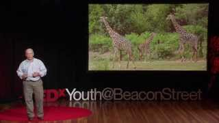 Saving animals, saving the future | John Linehan | TEDxYouth@BeaconStreet