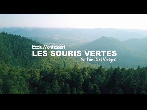 Film Les souris vertes, école Montessori