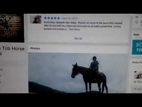 Cape Tribulation Horse Rides Hiring Expatriate Worker Sonali In Australia