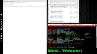 Kali v2.0 sana - install tor browser - Meta-Thrunks!