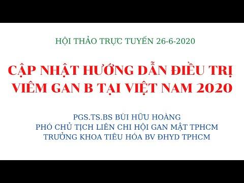 CẬP NHẬT HƯỚNG DẪN ĐIỀU TRỊ VIÊM GAN B TẠI VIỆT NAM -2020_ PGS.TS.BS BÙI HỮU HOÀNG
