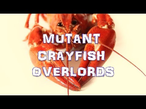 Welcoming Our Mutant Crayfish Overlords