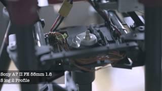 sony a7 ii fe 55mm 1 8 test s log 2