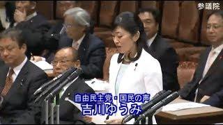 吉川ゆうみ 自由民主党・国民の声 決算委員会 参議院 2019 04 04