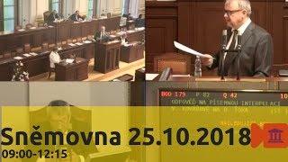 Sněmovna 25.10.2018 (9:00-12:15) - Interpelace, ArcelorMittal