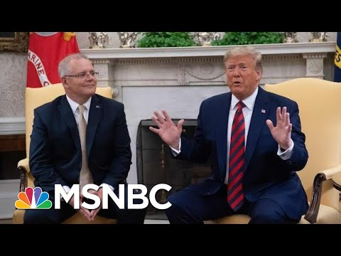 President Donald Trump Says Whistleblower Report Is 'Another Political Hack Job' | MSNBC