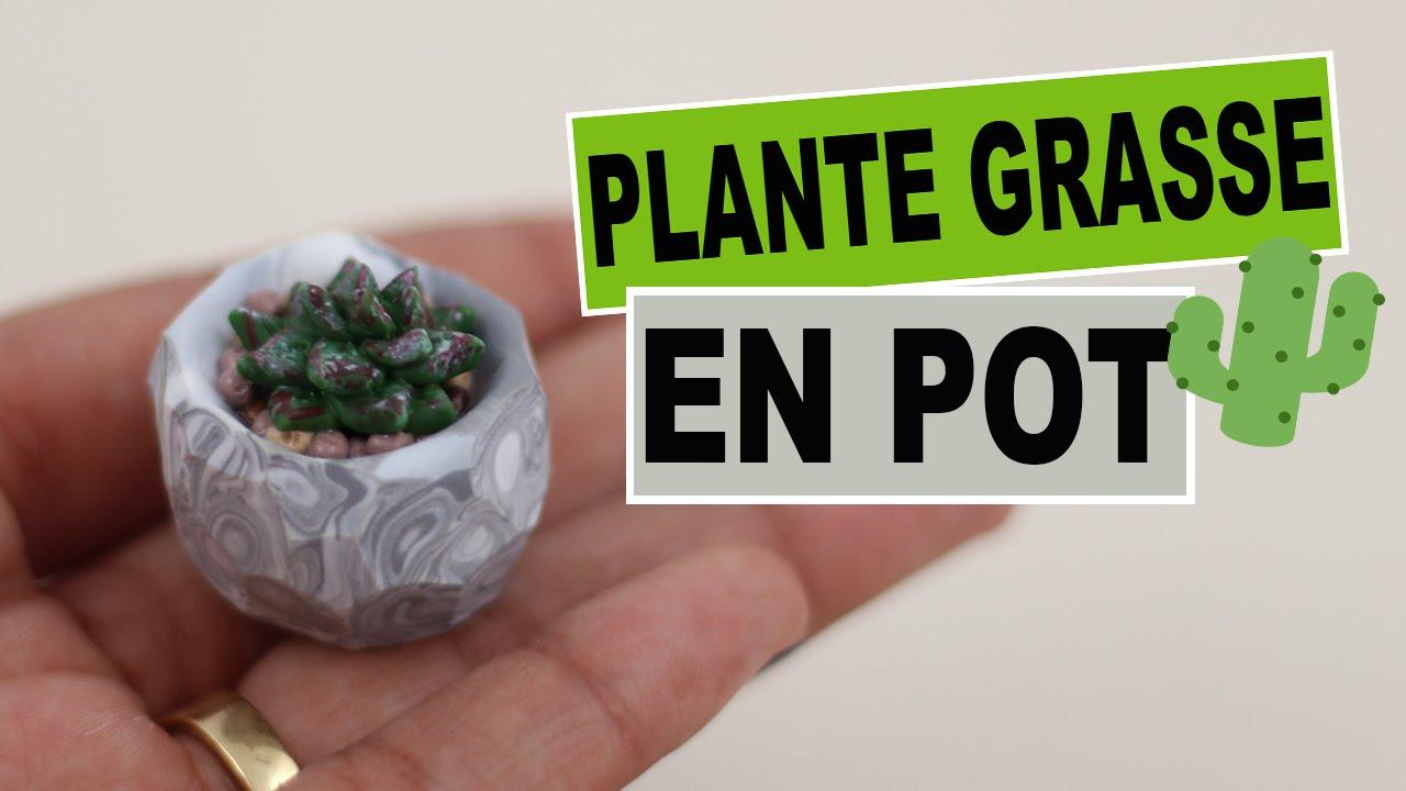 plante grasse fimo