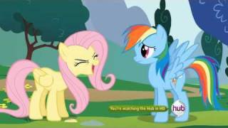 My Little Pony: Friendship is Magic - Fluttershy cheer