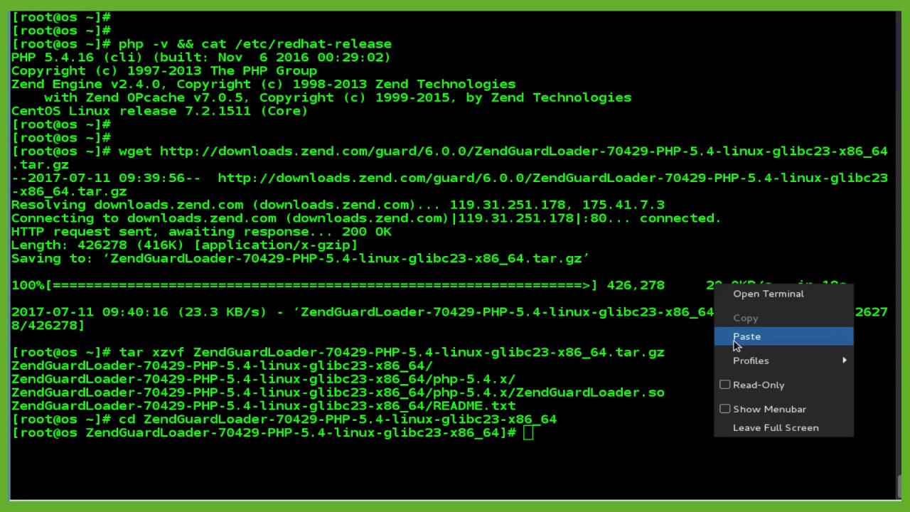Install zend guard and ioncube loader on vestacp ubuntu server.