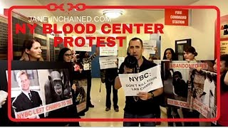 Protest against the New York Blood Center for Abandoning Chimps!