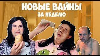 НОВЫЕ ВАЙНЫ ЗА НЕДЕЛЮ Gan13