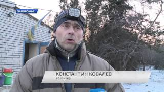 Собаки-инвалиды в Запорожье зимуют без тепла и света.
