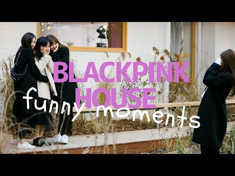 Cover Lagu BLACKPINK HOUSE || FUNNY MOMENTS pt.1 STAFABAND