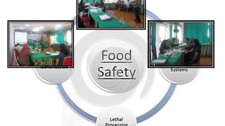 In House Training Risk Assessment on Food Safety - BMD Street Consulting