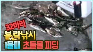 1물 조류약한날 볼락낚시 들물 시작되니 대박 조황..