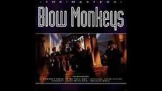 The Blow Monkeys _ Celebrate-The day after you.wmv