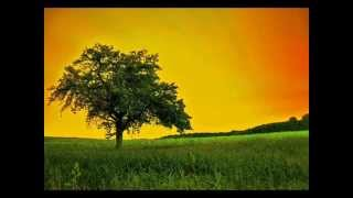 Chill Reggae, Big Bass & Dubstep Summer Mix 2013