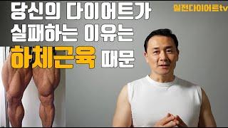 다이어트 실패 이유는 하체근육이 부족하기  때문 [계단…