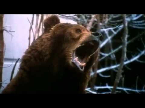 12 Monkeys 1995 Brad Pittsиз YouTube · Длительность: 1 мин32 с  · Просмотры: более 3000 · отправлено: 29.04.2014 · кем отправлено: bodebliss