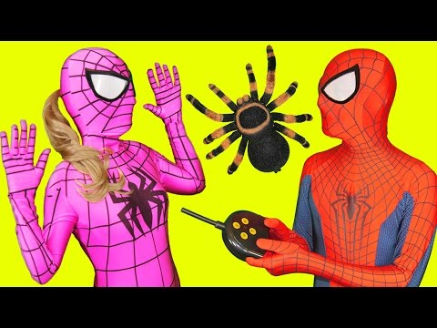 Thumbnail: Pink Spidergirl Spider Prank with Spiderman in Real Life Fun