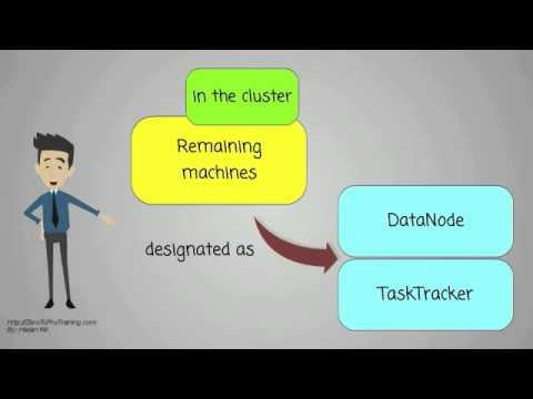 What is a Hadoop cluster?