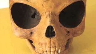 Danish Workers Find Alien Skull On Denmarks Sealand Island