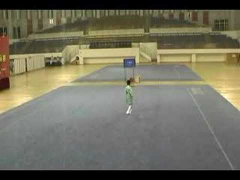 2007 Guangdong Youth Provincial Taijiquan 13 and under