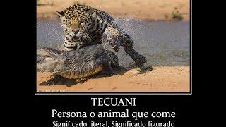 DANZA TEATRO DE LOS TECUANES  1 PARTE M�...