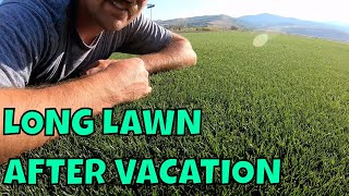LONG LAWN AFTER VACATION Part 1  // Connor Ward