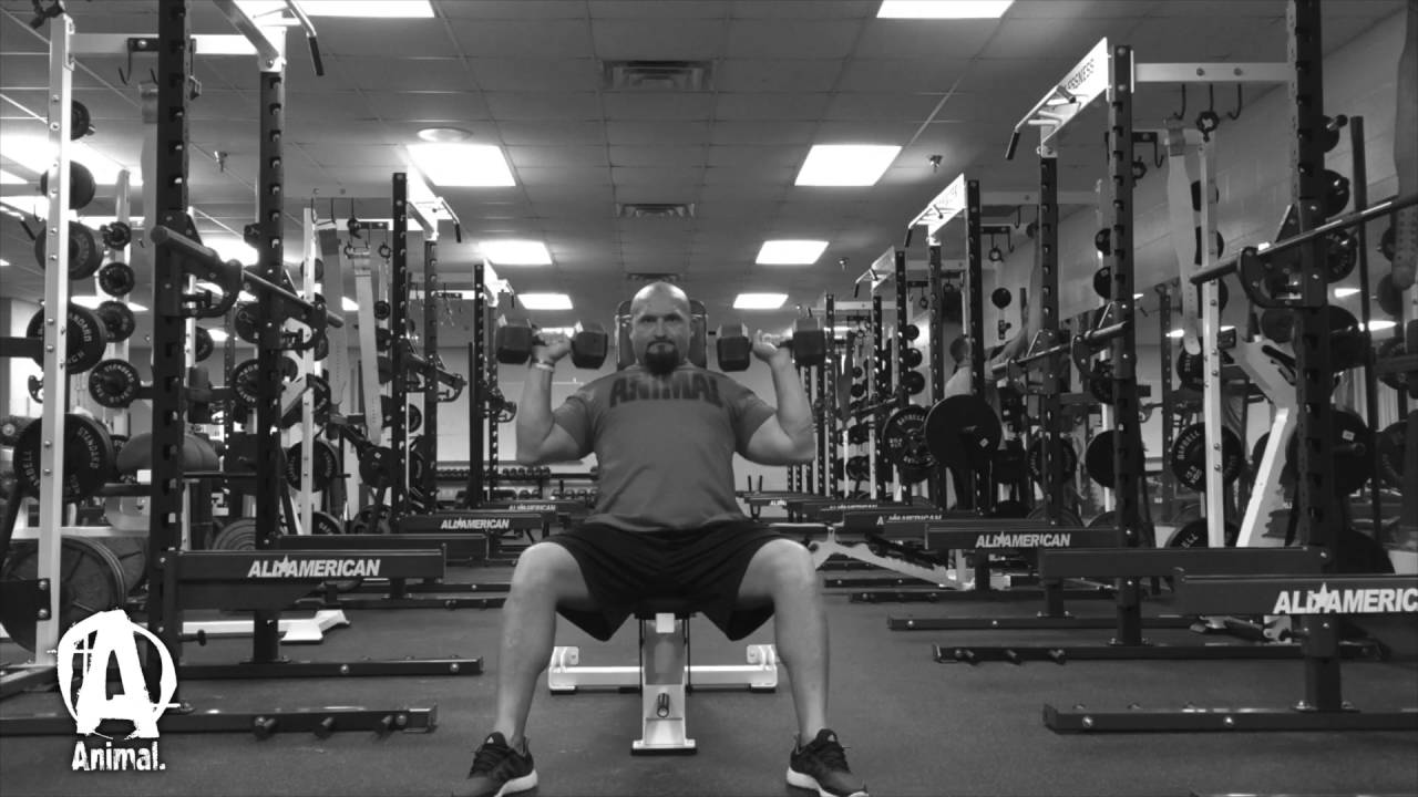 Download The Animal Underground: BJ Whitehead, Torn Tricep Rehab