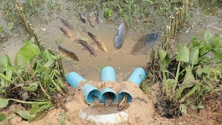 We Survival - Catching Fish With Deep Hole Trap