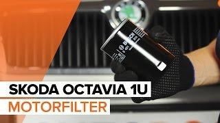 Video-Anleitung zur Reparatur Ihres SKODA