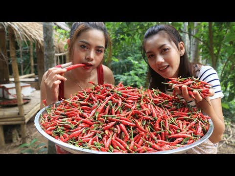 Yummy cooking chili paste recipe - Cooking skill